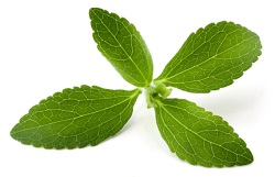 If you're someone looking to lose weight naturally, what are your options?  As it turns out, some popular herbs ...